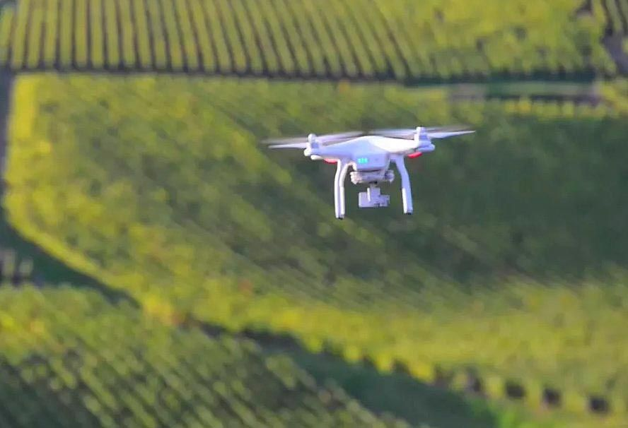 Vineyard of the Future