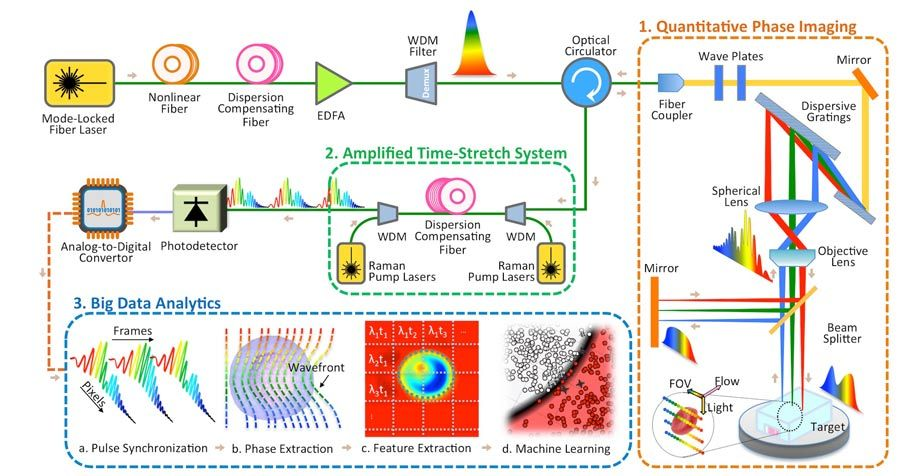 Figure 3. Diagram of the time stretch quantitative phase imaging and analytics system.