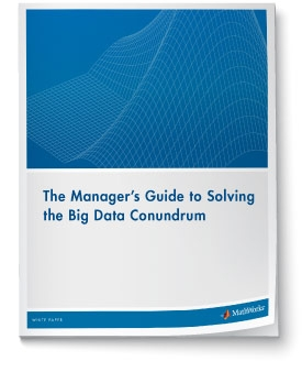 Download White Paper: Beyond Excel: The Manager's Guide to Solving the Big Data Conundrum